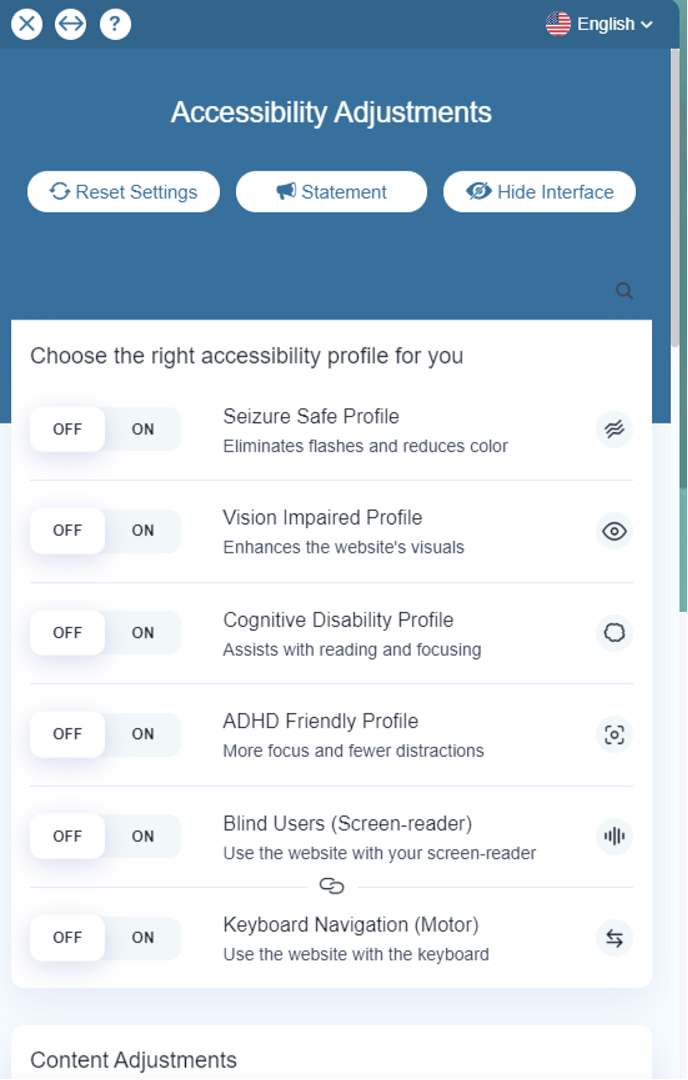 Screenshot of accessibility tool showing accessibility adjustments described in full text above image.